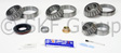 SKF - SDK317 - Differential Rebuild Kit