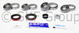SKF - SDK321 - Differential Rebuild Kit