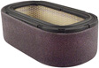 Hastings Filters - PA4553 - Oval Air Element with Foam Wrap