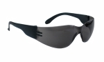 SAS - 5343-50 - NSX Eyewear with Clamshell, Shade Lens/Black Temple